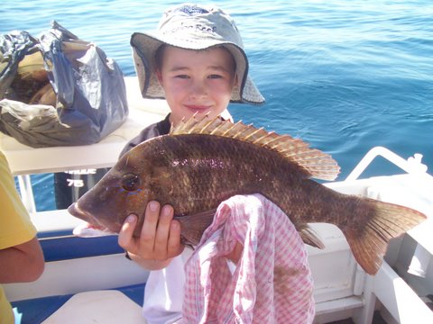 Toms first snapper
