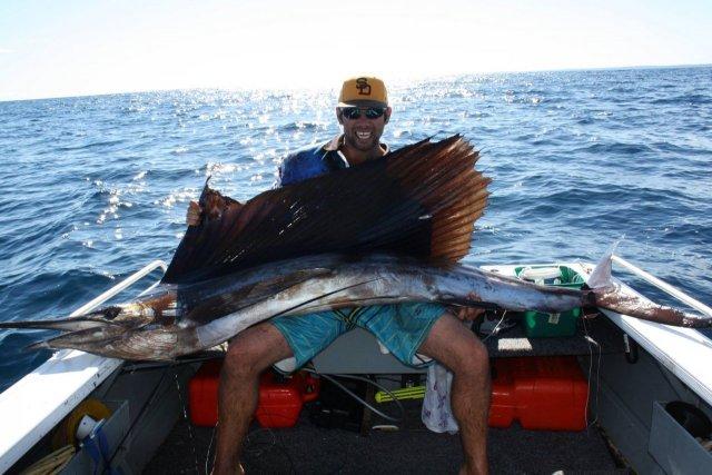 sailfish 2.7 meters from a tinny. Adam Smallridge