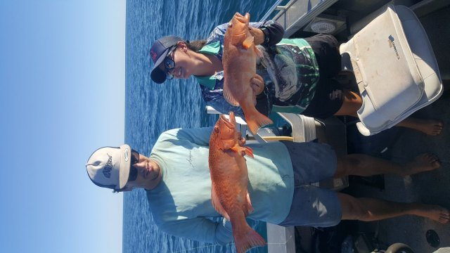 Few trout around atm