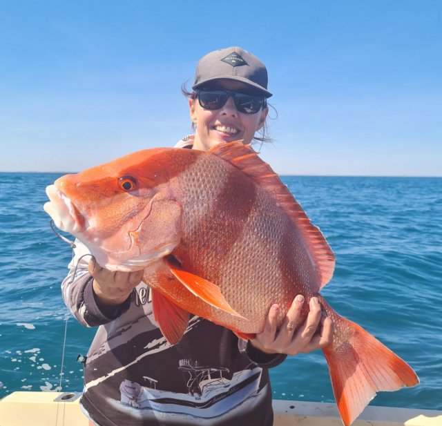 Red from 12m on 20lb