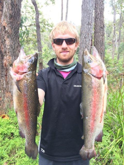 Conc trout