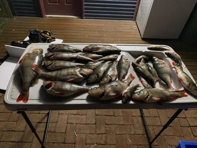Redfin session