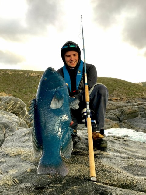 Big Blue to christen the new rod