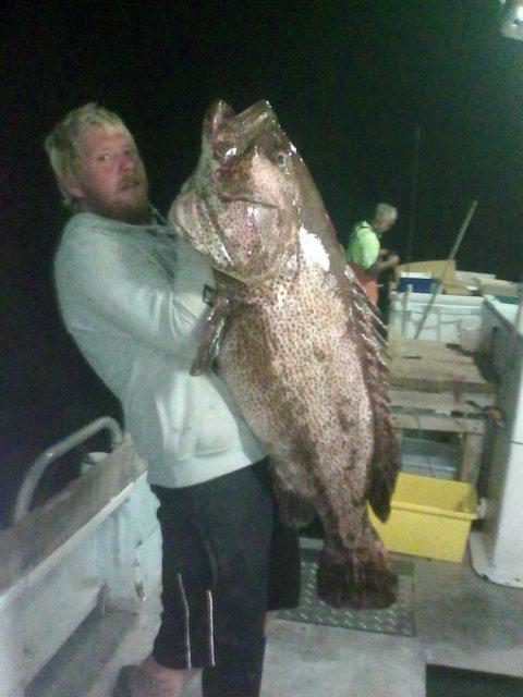 Dans big cod