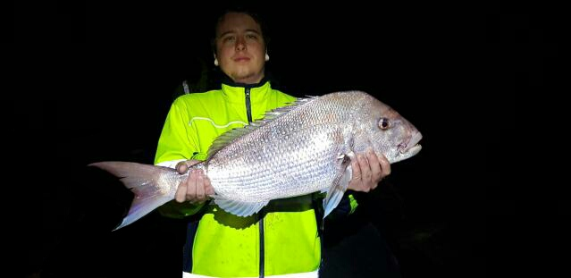 Perth Metro Pink Snapper